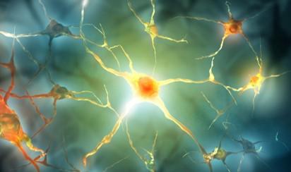 Neurological conditions - Coeliac UK
